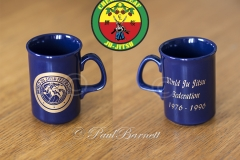 WJJF 20th Anniversary Cup